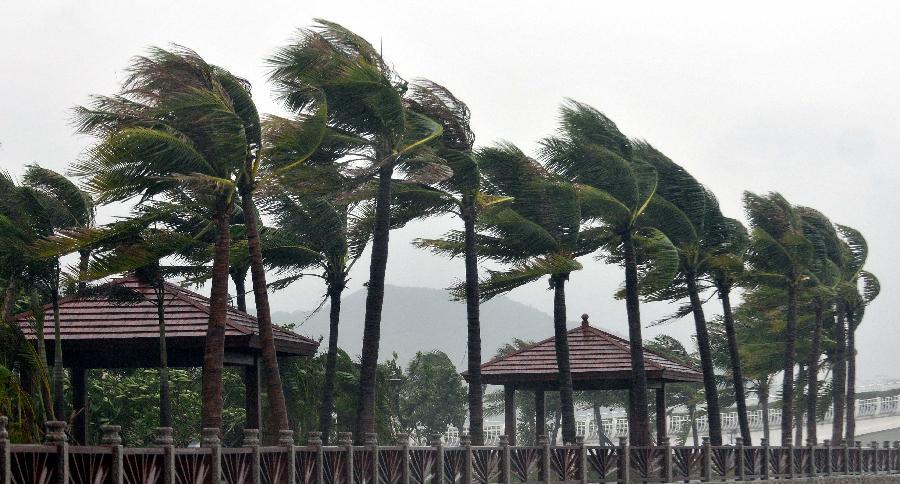 BMKG Juanda : Ini Penyebab Gresik dan Sekitarnya Dilanda Angin Kencang (Hingga Satu Minggu Kedepan Masbro Mbaksis!) (1/4)